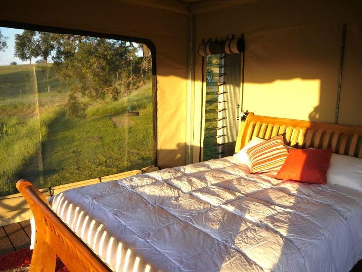 Accommodation - Our beautiful tents at Donnybrook Eco Retreat