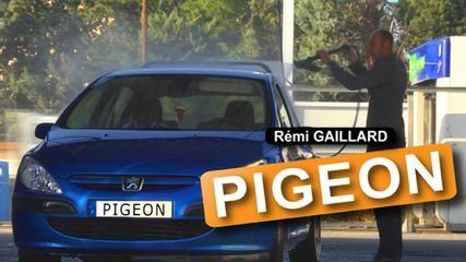 Hahaha pigeon stunt! #trailer #cantwait @remigaillard #nimportequoi :D