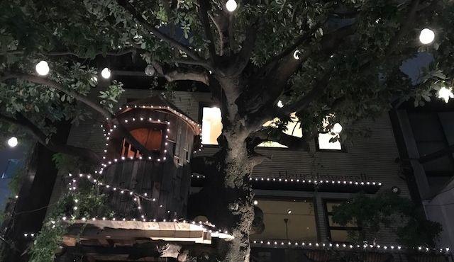 麻布にある素敵なツリーハウスカフェ「Le Grands Arbres」