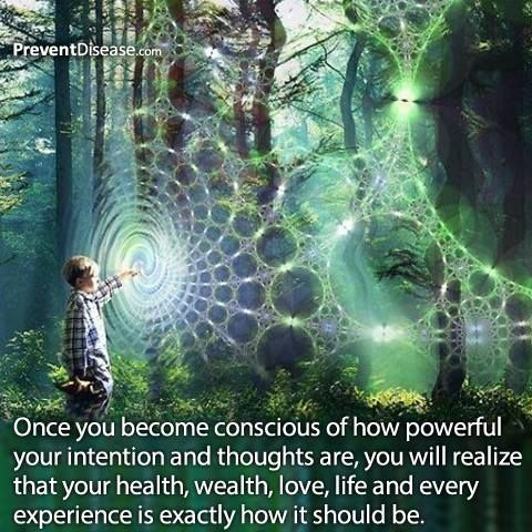 You are powerful... Once you become conscious of how powerful your intention and thoughts are, you will realize that your health, wealth, love, life and every experience is exactly how it should be.