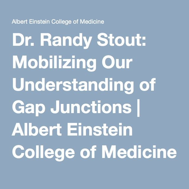 Dr. Randy Stout: Mobilizing Our Understanding of Gap Junctions | Albert Einstein College of Medicine