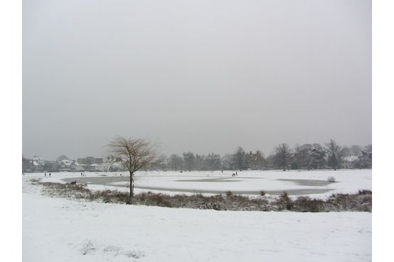 Wimbledon Common in the snow 2012