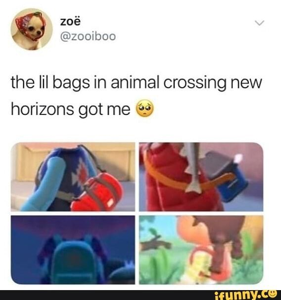 The Lil Bags In Animal Crossing New Horizons Got Meu º Ifunny