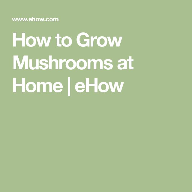 How to Grow Mushrooms at Home | eHow