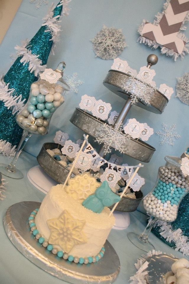Winter Wonderland One Derland 1st Birthday Party Baby Boy