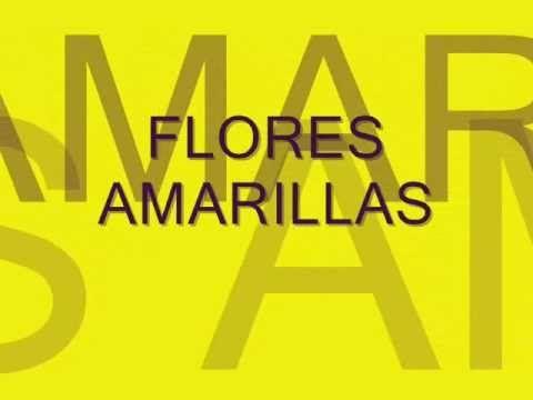 Floricienta-Flores Amarillas (letra)