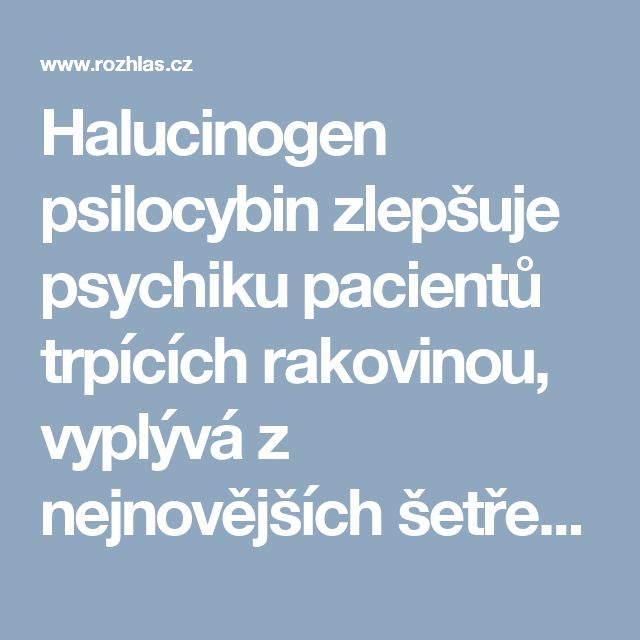 Halucinogen psilocybin zlepšuje psychiku pacientů trpících rakovinou, vyplývá z nejnovějších šetření | Wave News