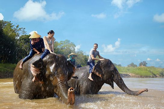 2. Ride An Elephant In Bangkok With new routes scheduled from New York to Bangkok via Stockholm with SAS/Thai Airways, Bangkok is easier to get to than ever. And, this city is made for bucket-list travelers. Eat something you can't pronounce at the floating markets. Learn to weave with flowers. Pray at a Buddhist temple, you've got your choice of quite a few. The food scene alone is ...