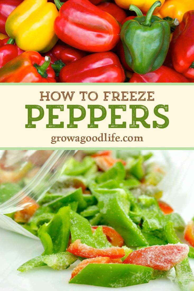 How To Freeze Peppers Stuffed Peppers Freezing Peppers Stuffed Sweet Peppers