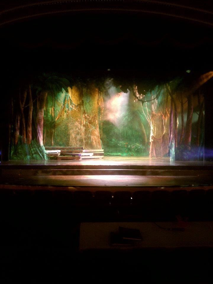 Jungle Book set- like the lighting