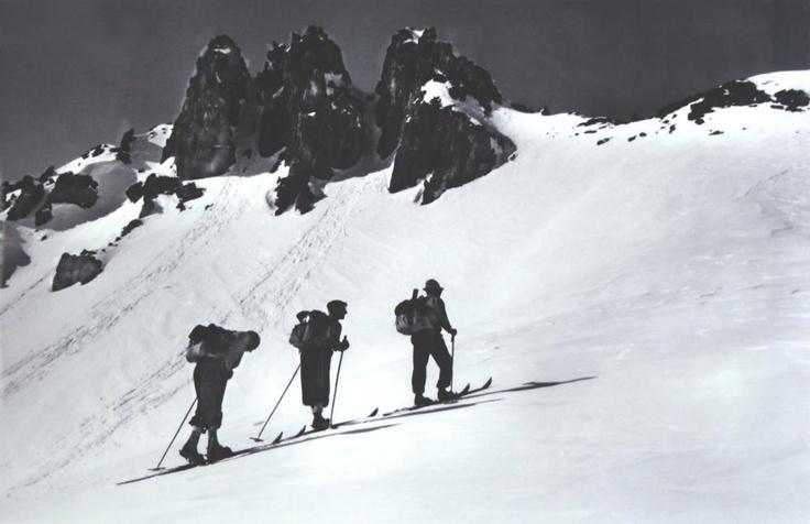 Vintage ski vintage skivintage blackski posterswhite