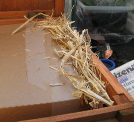 Insulating your rabbit hutch for winter.