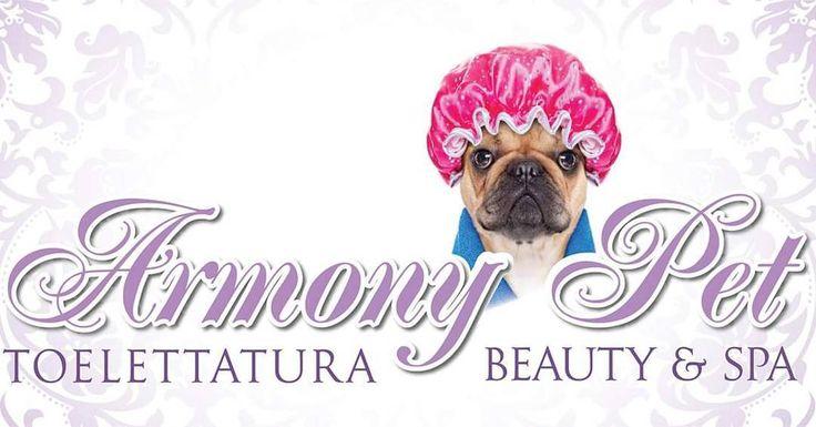 Una nuova attività si è iscritta su #BauSocial! @armonypetbeatyspatorino  Toelettatura e Beauty SPA per cani e gatti di tutte le taglie a Torino .  #Torino #Cane #dog #toelettatura #work #job #rcnetwork #pug #puglife #logo #socialmedia #italia #milano #dogsitter #doglovers #italy #piemonte #toeletta #cani #washdog #labrador #pastoretedesco #volpino #marketing #love #happy #amazing #beautiful