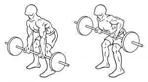Reverse Barbell Row