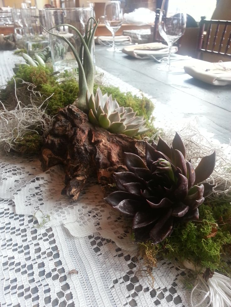 59 best sfm wedding centerpieces images on pinterest diy wedding succulents airplants driftwood and mixed mosses brought these wedding farmtables to life junglespirit Gallery