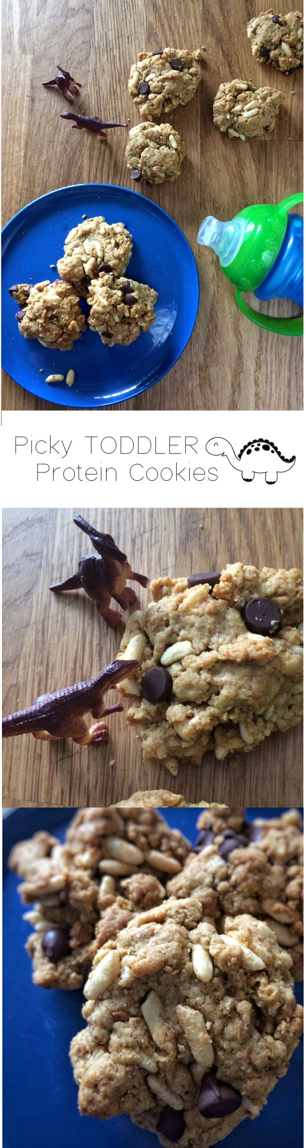 Picky Toddler Protein Cookies - Made with peanut butter, fortified infant cereal, and whole wheat flour, this tasty cookie recipe to help your picky toddlers get the iron they need.