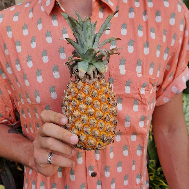 The Pina Coralada Pineapple Shirt by Kenny Flowers www.kennyflowers.co