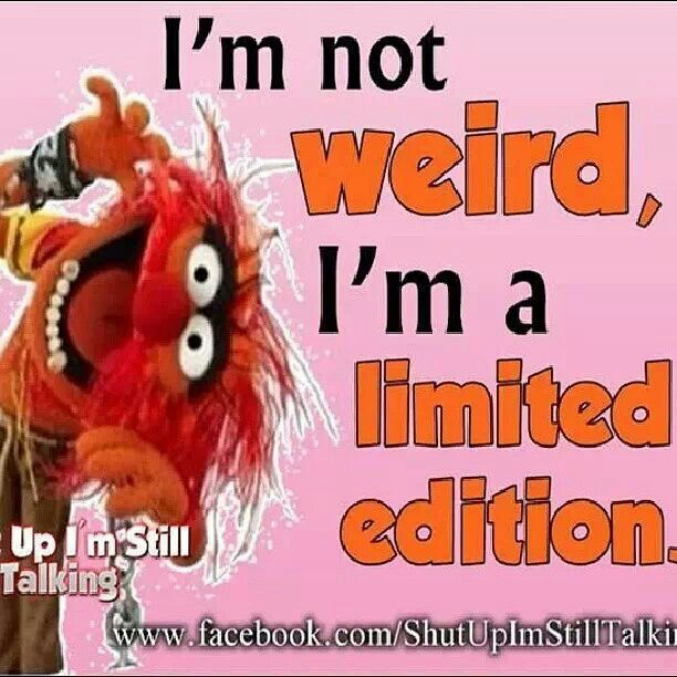 Muppet Quotes Muppetquotes: 49 Best Images About Animal Unleashed On Pinterest