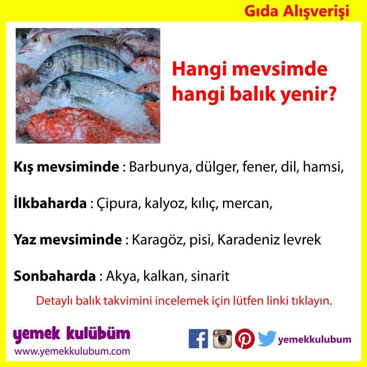 GIDA ALIŞVERİŞİ : Hangi mevsimde hangi balık yenir?   http://yemekkulubum.com/icerik_sayfa/hangi-mevsimde-hangi-balik-yenilir   #balık #sezon #mevsim #mercan #barbun #fener #dil #dilbalığı #amsi #karagöz #akya #kalkan #sinarit