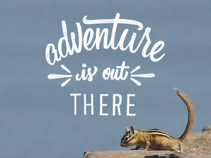 Adventure Is Out There Quote - Bing images