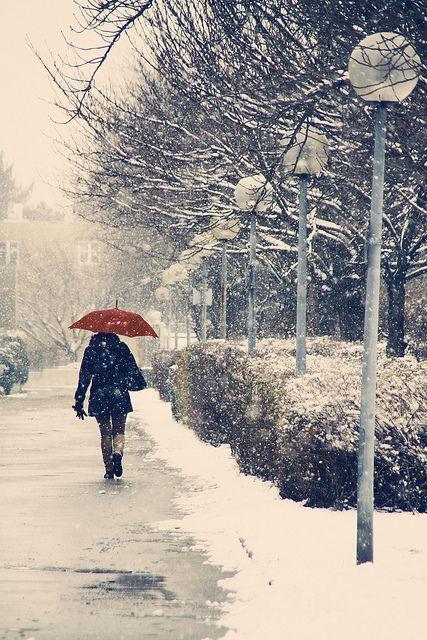 One-day snow #vienna