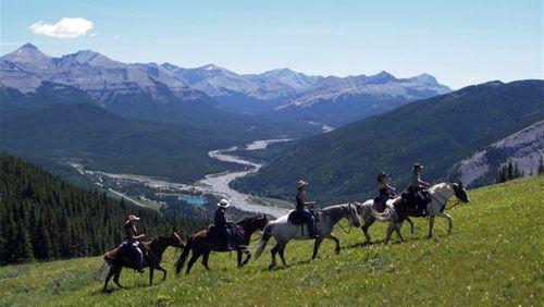 Horseback Riding in the Rockies