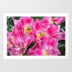 Pink - Fucsia Flowers Art Print