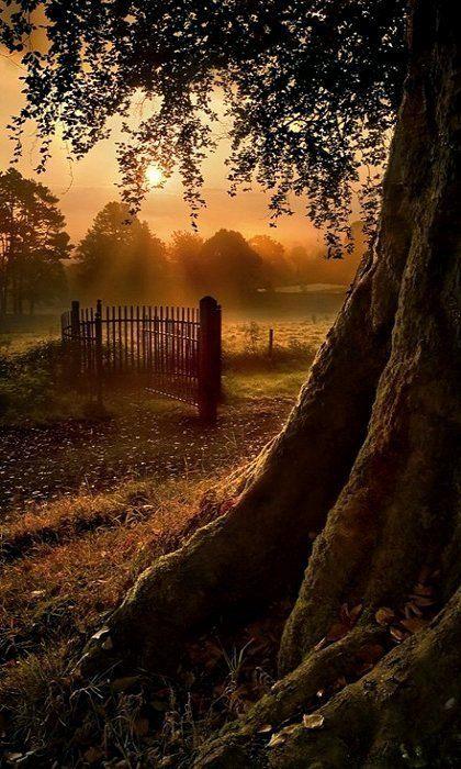 Sunrise Gate.. Ireland