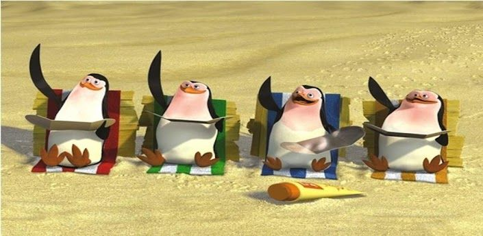 Pingwiny z Madagaskaru1