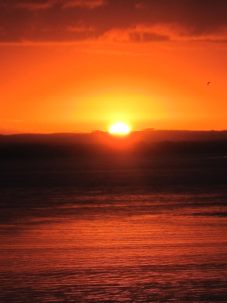 Sunset in Rangiputa North Island New Zealand