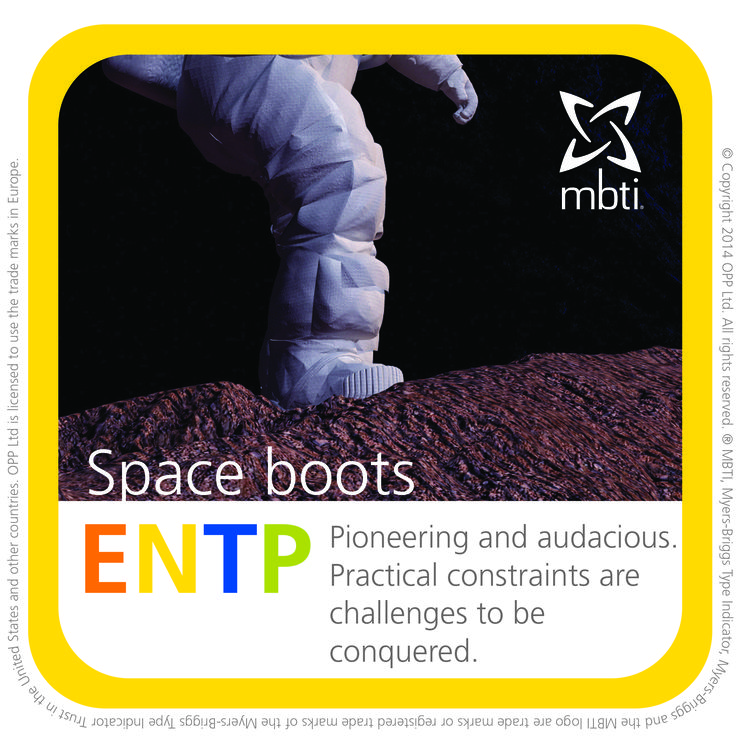 53 best images about MBTI type