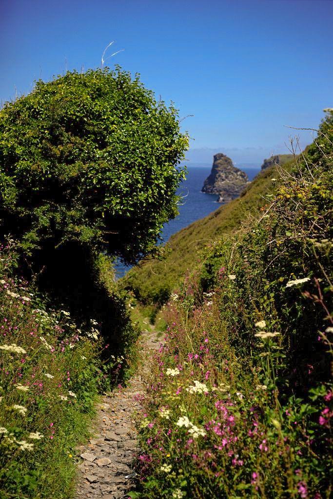 Bossiney Cove: Boscastle to Tintagel (Cornwall, England) by Matt Keyworth