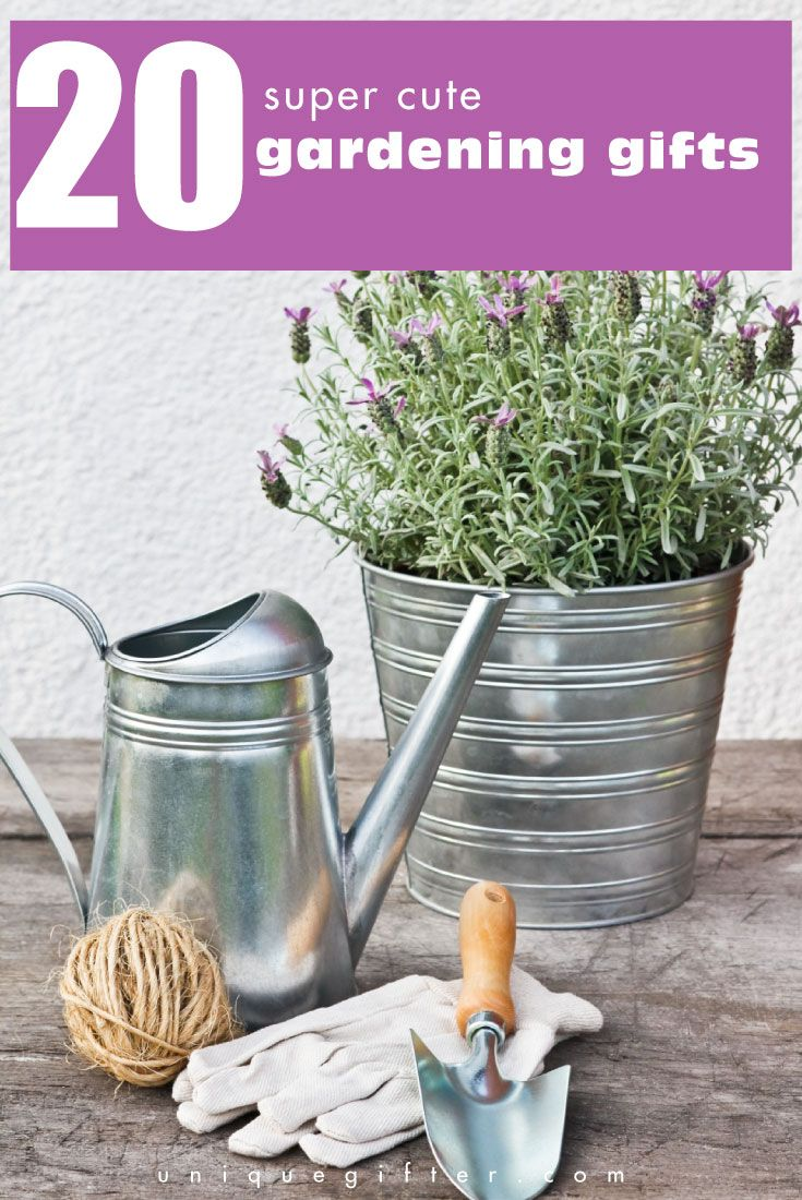 25 unique christmas gift ideas for boss ideas on - Gifts for the gardener who has everything ...