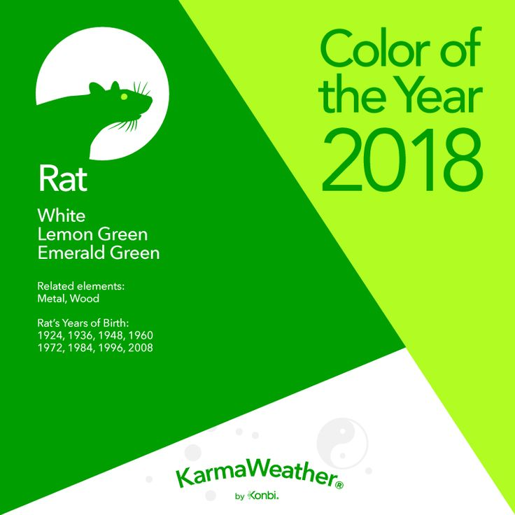1948 chinese new year the 25 best feng shui for rat 2018 ideas on pinterest feng shui - Chinese New Year 1984