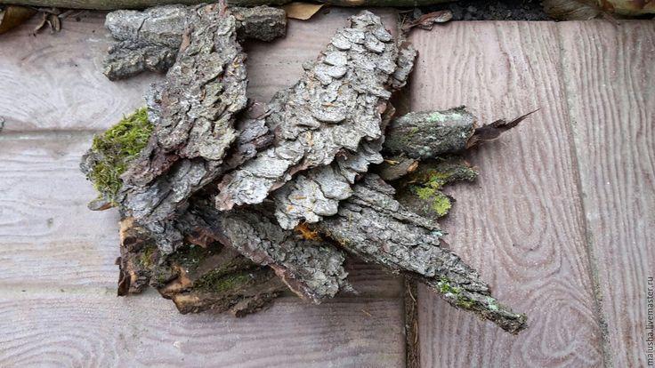 Купить Кора древесная (берёза, ель, сосна и осина) - кора сосны, сосновая кора, кора