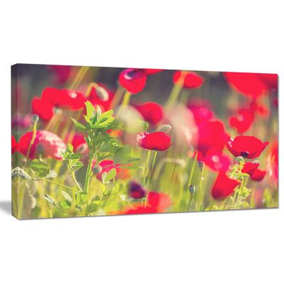 DesignArt 'Red Poppies on Green Background' Photographic Print on Wrapped Canvas Size: