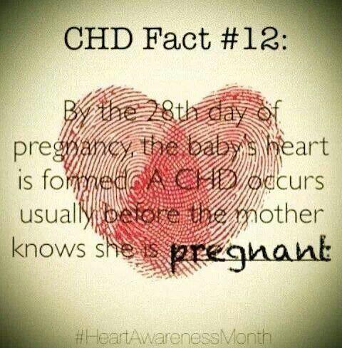 CHD Fact
