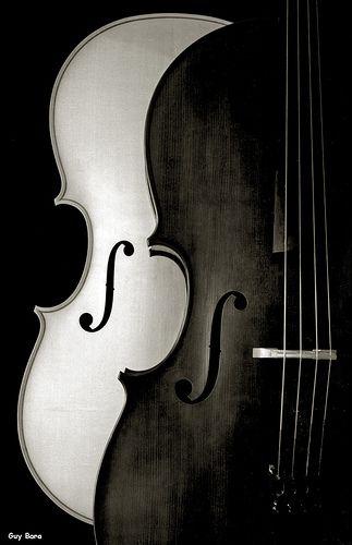 """https://flic.kr/p/KjjPG   Pour une vie au long sel...   Longue histoire, sur cette photo. Ces instruments ont été fabriqués par Patrick Robin, éminent luthier angevin. Le violoncelle blanc est encore à l'état brut, sans verni ; il ne s'agit d'ailleurs que de la """"table"""" (le """"dessus""""). J'ai donc, pour faire cette photo et d'autres, été amené à manipuler l'instrument en petits morceaux, avant son assemblage, Patrick m'ayant laissé une totale liberté. La cerise sur le gâteau, ça"""