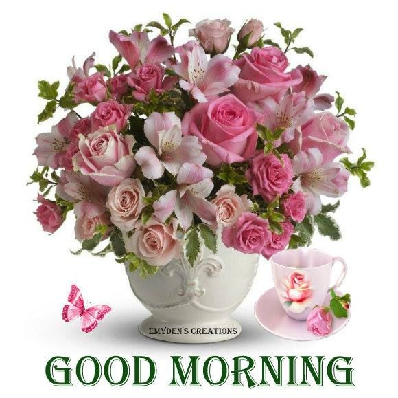 Good Morning Beautiful Pink Roses : Best images about plaatjes cards goodmorning on