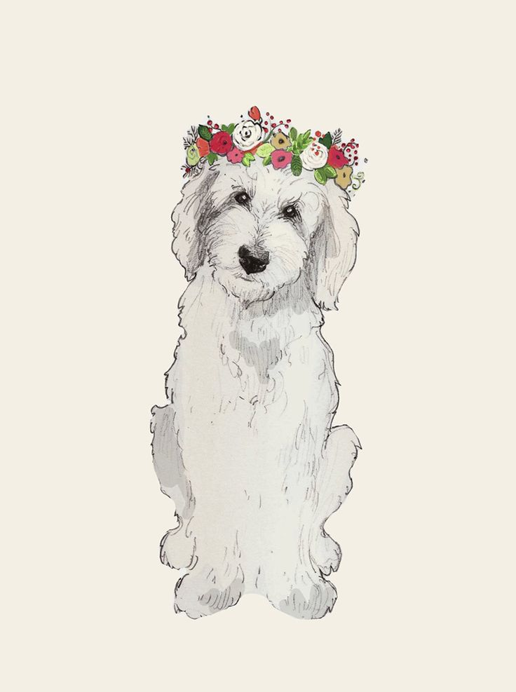 23 Gorgeous Gifts For People Who Are Obsessed With Their Goldendoodle