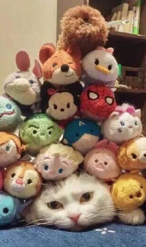 I hate you and your bloody Tsum-Tsum things.