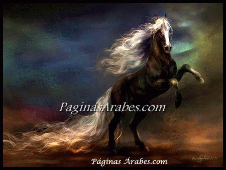 Los caballos árabes tienen su spa en Qatar - paginasarabes