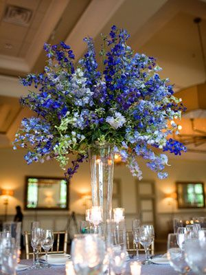royal blue chair sashes tulip table and chairs uk 88 best centerpieces images on pinterest | centerpiece ideas, branch decorating ...