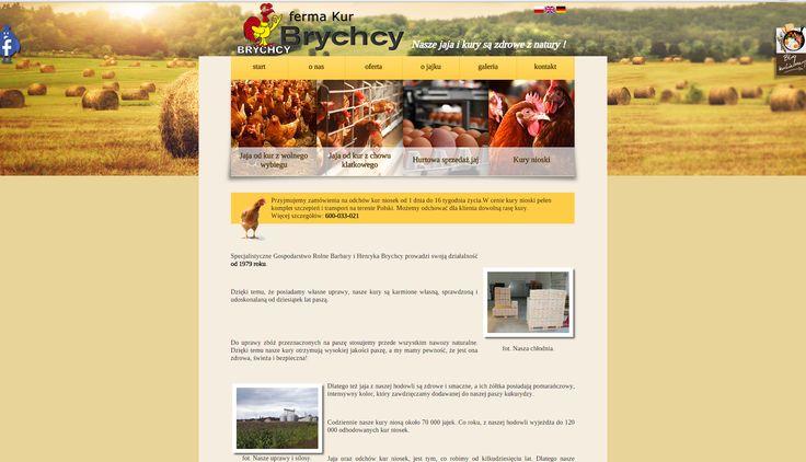 Bardzo jajeczna strona internetowa jednego z naszych stałych klientów!