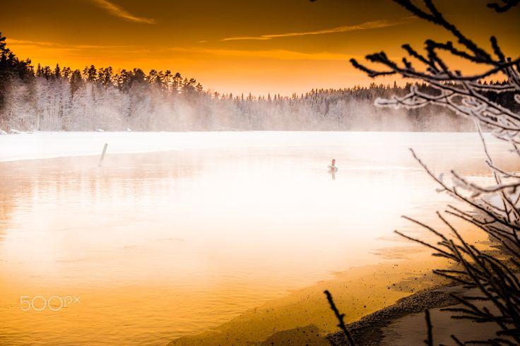 Golden creek - Golden hour.