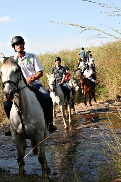 Horse riding at Alpine Heath http://www.n3gateway.com/things-to-do/adventure-activities.htm