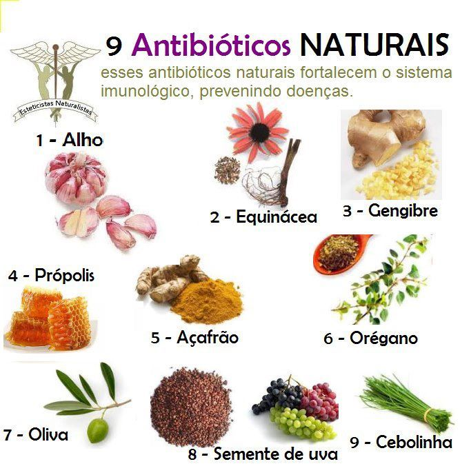 Conheça Vários Alimentos que são Antibióticos Naturais