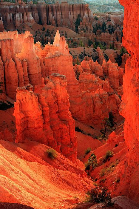 Sunrise Point, Bryce Canyon National Park, Utah. By Kenan Sipilovic