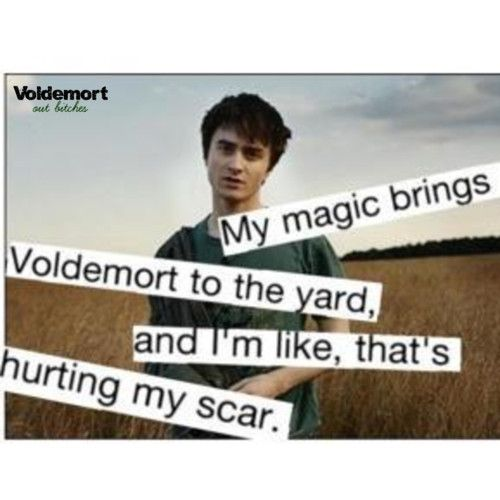 I can't stop laughing. His face...Harry Potter Jokes, Nerd, Laugh, Harrypotter, Things, So Funny, Hilarious, Harry Potter Humor, Giggles