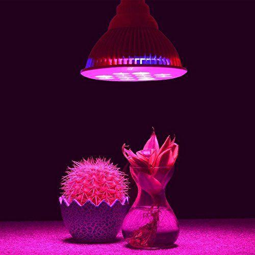 cool Planta hidropš®nica LED de luces de crecimiento de los bulbos, Dland 12W, 12 LED, 3 Azul / Rojo 9 Perfect luces de crecimiento para plantas hidropš®nicas Jardšªn Invernaderos, flores de interior, Hortalizas, Jardšªn Iluminaciš®n. Mas info: http://www.comprargangas.com/producto/planta-hidropsnica-led-de-luces-de-crecimiento-de-los-bulbos-dland-12w-12-led-3-azul-rojo-9-perfect-luces-de-crecimiento-para-plantas-hidropsnicas-jardsan-invernaderos-flores-de-inte/